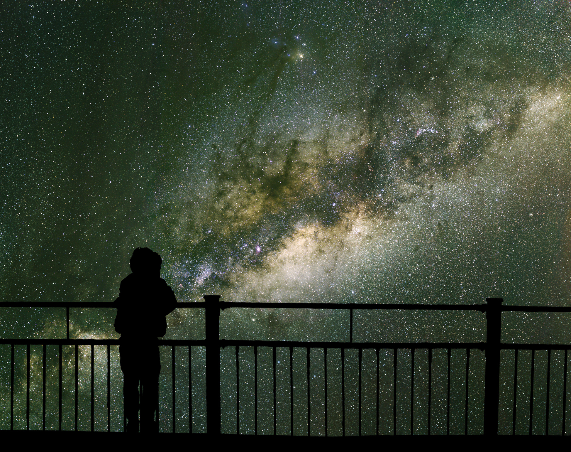Man looking at the starry sky